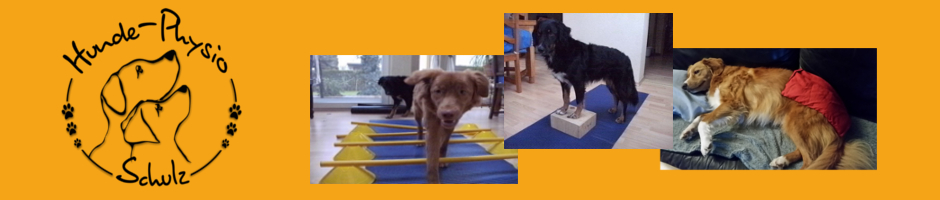 Hunde-Physiotherapie & Osteopathie